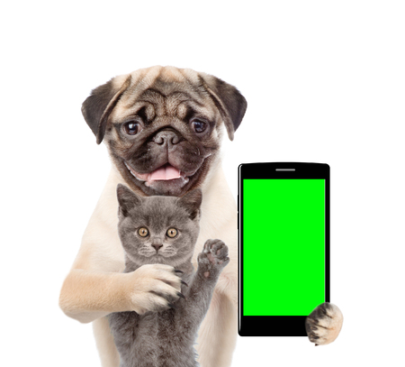 Photo for Cat and dog with smartphone. Isolated on white background. - Royalty Free Image