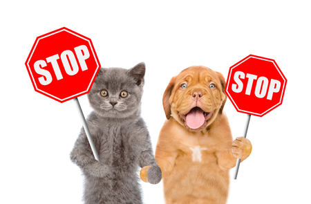 Foto de Cat and dog with the stop signs. Isolated on white background. - Imagen libre de derechos