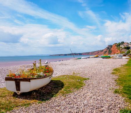 Photo pour Bird on floral boat - image libre de droit