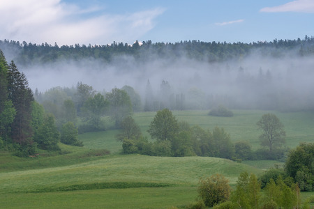 Photo pour French landscape - Jura. View over a flower meadow and a forest in the background with a light fog. - image libre de droit