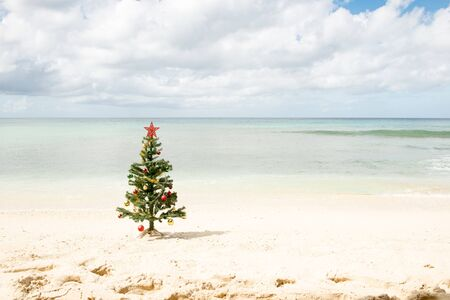 Photo pour Decorated Christmas tree standing by the sea shore under cloudy skies - image libre de droit