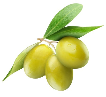 Photo for Three green olives on branch with leaves isolated on white - Royalty Free Image