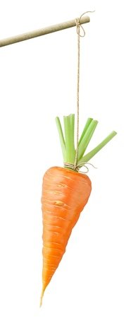 Photo for Carrot dangling on a string isolated on white - Royalty Free Image