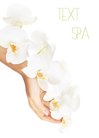 Fresh white orchid in female hands, woman holding flower, isolated on white background, beauty, health care and spa concept