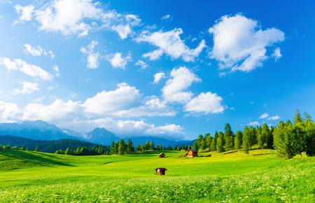 Photo pour Beautiful landscape of valley in Alpine mountains, small houses in Seefeld, rural scene, majestic picturesque view in sunny day - image libre de droit