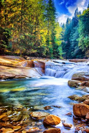 Foto de Beautiful waterfall in the forest, amazing fast water stream between stones, wonderful landscape, beauty of wild Ukrainian nature - Imagen libre de derechos