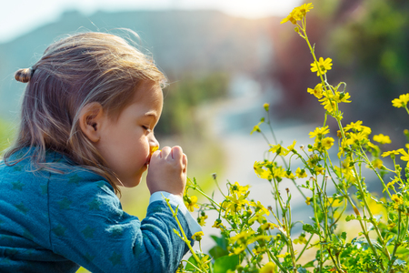 Photo pour Little boy enjoying flowers aroma, with pleasure with closed eyes smelling gentle yellow wild flowers, enjoying beauty of fresh spring nature - image libre de droit