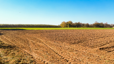 Photo pour cultivated field prepared for sowing - image libre de droit