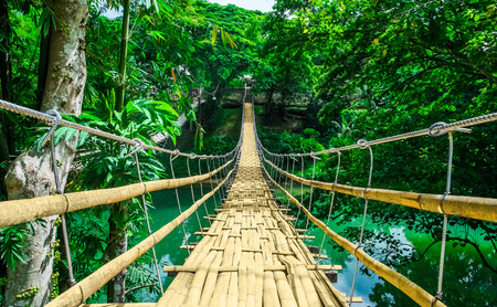 Photo for Bamboo pedestrian hanging bridge over river in tropical forest, Bohol, Philippines, Southeast Asia - Royalty Free Image