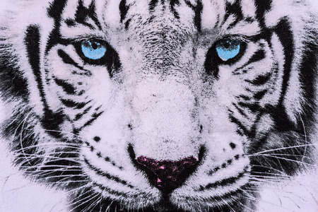 texture of print fabric striped the white tiger face for background