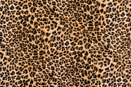 Foto de texture of print fabric striped leopard for background - Imagen libre de derechos