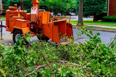 Foto per Agricultural machinery, wood shredder chipper machine to remove - Immagine Royalty Free