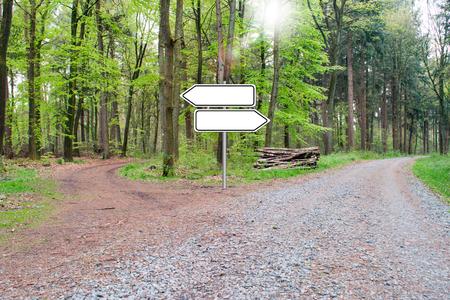 Photo pour Bifurcation of a footpath in the wood - Choose your way. Empty Sign. - image libre de droit