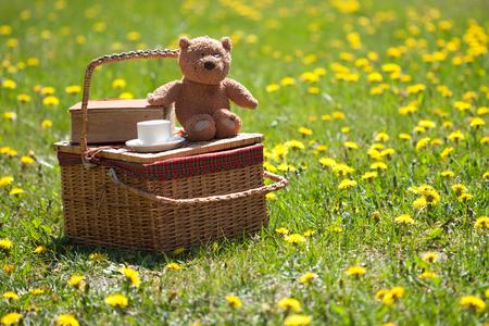 Photo pour Picnic basket and book on the grass - image libre de droit