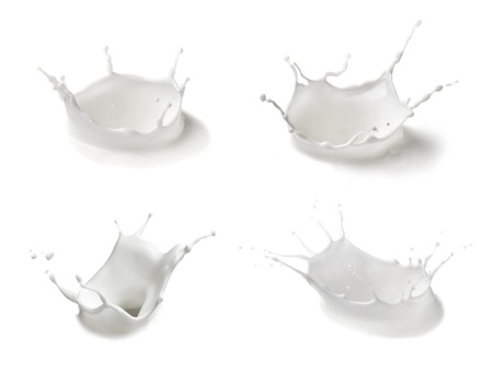Photo for collection of  various milk splashes on white background - Royalty Free Image