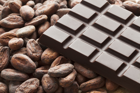 Photo for Bar of chocolate with raw cocoa beans - Royalty Free Image