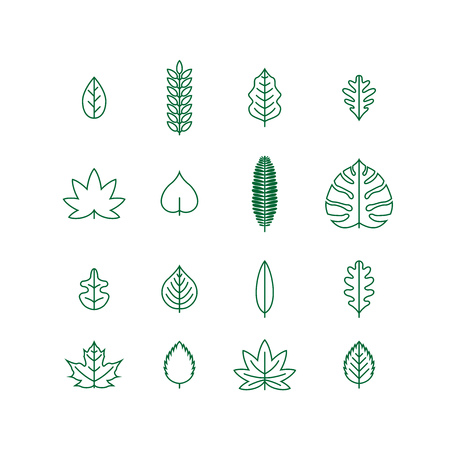 Illustration for various line leaf icon collection - Royalty Free Image