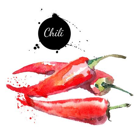 Illustration pour Chilli. Hand drawn watercolor painting on white background. Vector illustration - image libre de droit