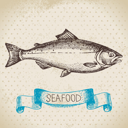 Illustration for Vintage sea background. Hand drawn sketch seafood vector illustration of salmon fish - Royalty Free Image