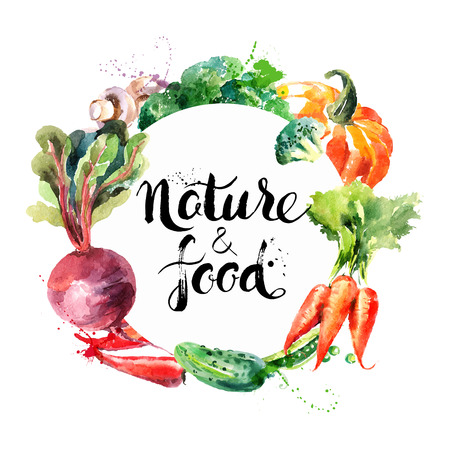 Illustration pour Eco food menu background. Watercolor hand drawn vegetables. Vector illustration - image libre de droit