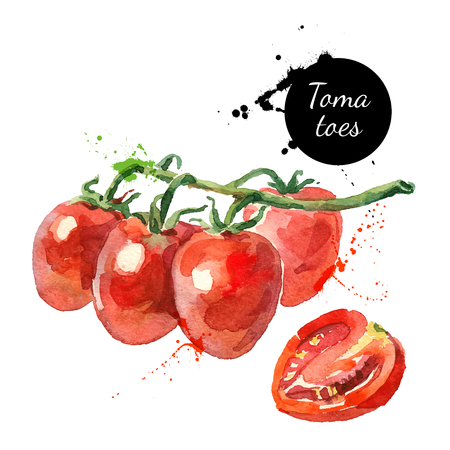 Illustration pour Watercolor datterino tomatoes. Isolated eco food illustration on white background - image libre de droit