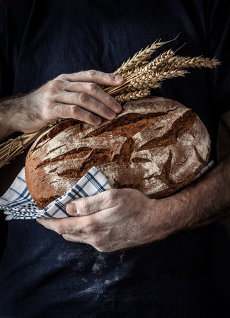 Foto de Baker man holding rustic organic loaf of bread and wheat in hands - rural bakery. Natural light, moody still life with free text space good for cover or poster. - Imagen libre de derechos