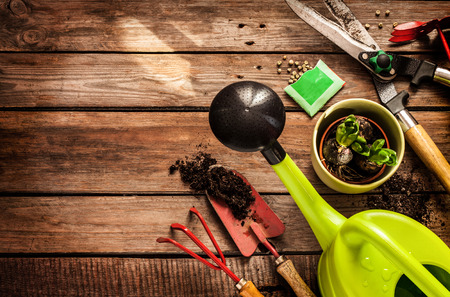 Foto de Gardening tools, watering can, seeds, plants and soil on vintage wooden table. Spring in the garden concept background with free text space. - Imagen libre de derechos
