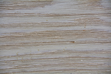 Photo for Texture of a light wood surface with darker and more visible veins: image suitable for use in high-definition graphic projects. - Royalty Free Image