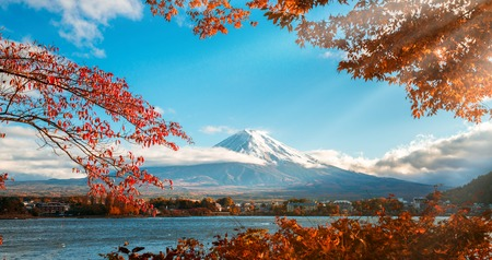 Photo pour Colorful Autumn in Mount Fuji, Japan - Lake Kawaguchiko is one of the best places in Japan to enjoy Mount Fuji scenery of maple leaves changing color giving image of those leaves framing Mount Fuji. - image libre de droit