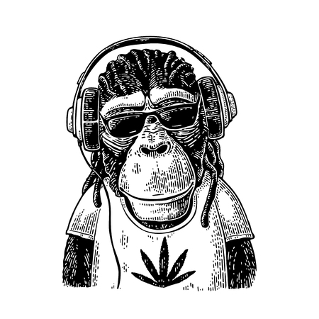 Illustration for Monkey hipster with dreadlocks in headphones, sunglasses and t-shirt - Royalty Free Image