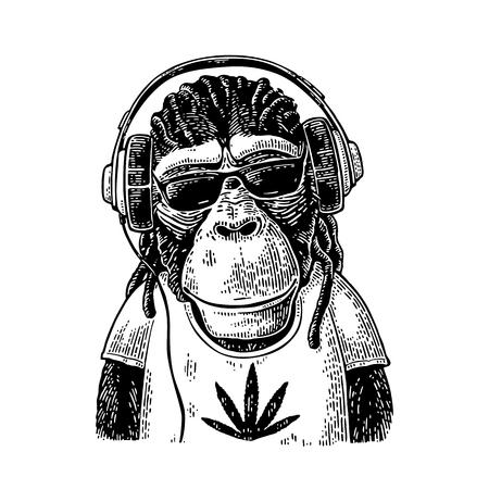 Illustration pour Monkey hipster with dreadlocks in headphones, sunglasses and t-shirt - image libre de droit