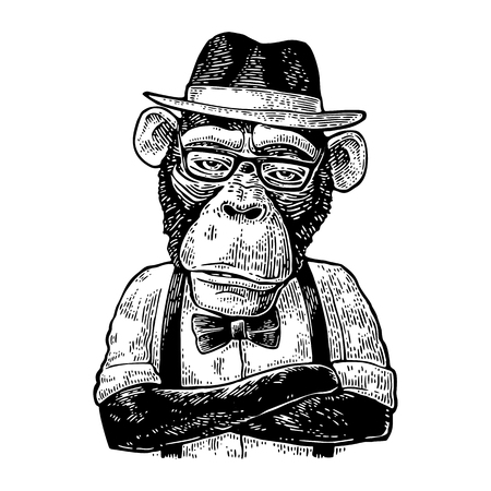 Illustration for Monkey hipster with arms crossed in hat, shirt, glasses and bow tie - Royalty Free Image