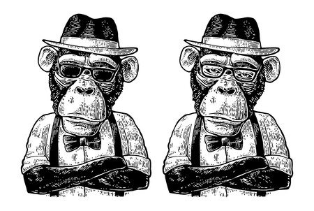 Illustration pour Monkey hipster with arms crossedin in hat, shirt, glasses and bow tie - image libre de droit