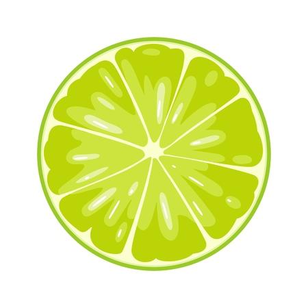 Ilustración de Round slice of lime. Isolated on white background. Vector flat color illustration - Imagen libre de derechos