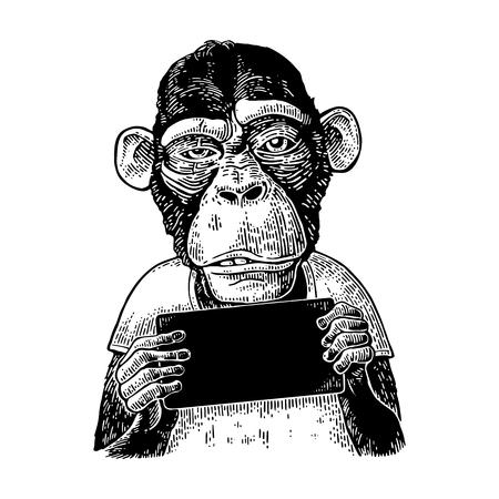 Illustration for Monkeys holding table. Vintage black engraving illustration for poster. - Royalty Free Image