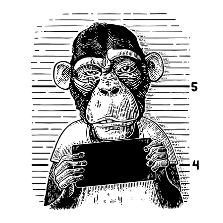 Illustration for Monkeys holding banner - Royalty Free Image