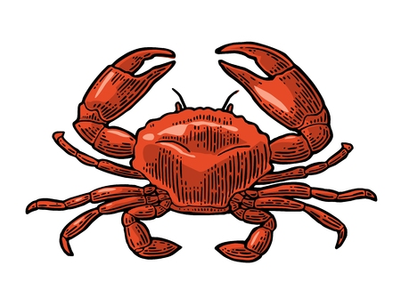Illustration for Crab icon illustration. - Royalty Free Image