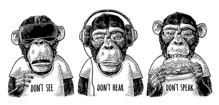 Illustration pour Three wise monkeys. Not see, not hear, not speak. Vintage engraving - image libre de droit