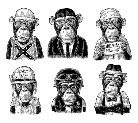 Illustrazione per Monkey in human clothes. Redneck, businessman, hipster, biker, soldier, beggar. Vintage black engraving illustration for poster. Isolated on white background - Immagini Royalty Free