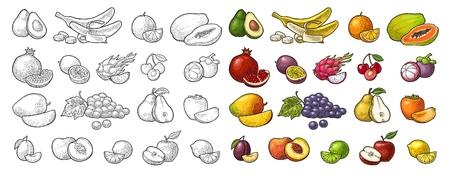 Ilustración de Set fruits. Mango, lime, banana, maracuya, avocado, dragon, lemon, orange, garnet, peach, apple, pear, grape, plum, passion, mangosteen, papay, persimmon, cherry. Vector color vintage engraving - Imagen libre de derechos