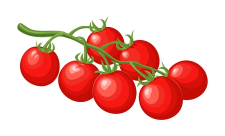 Illustration for Branch of tomatoes. Vector flat color illustration. - Royalty Free Image