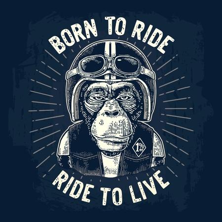 Ilustración de Monkey biker dressed in the motorcycle helmet, waistcoat and glasses. Born to ride lettering. Vintage white engraving illustration, isolated on dark blue background for poster, t-shirt print bike club. - Imagen libre de derechos
