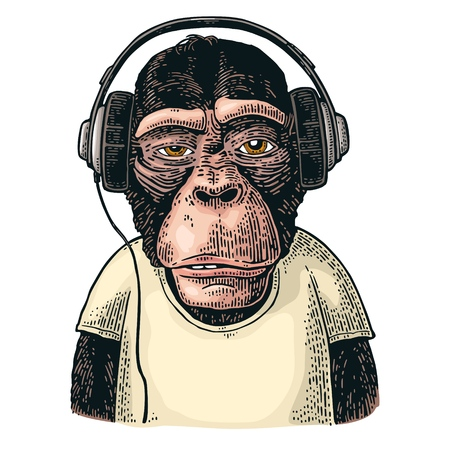 Illustration for Monkey dressed t-shirt hear headphones. Vintage color engraving illustration for poster. Isolated on white background - Royalty Free Image