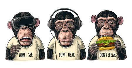 Illustration pour Three wise monkeys in headphones, virtual reality headset,and burger. Not see, not hear, not speak. Vintage color engraving illustration for poster. Isolated on white background - image libre de droit