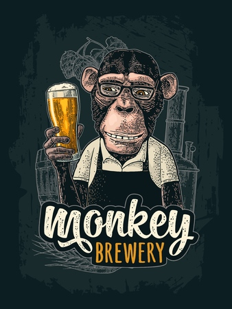 Illustration pour Monkey dressed in apron holding beer glass. Brewery handwriting lettering. Vintage color engraving illustration for poster and t-shirt. Isolated on white background - image libre de droit