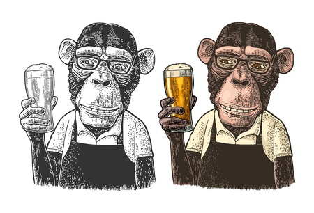Illustration pour Monkey fast food worker dressed in apron holding glass of beer. Vintage color and black engraving illustration. Isolated on white background. Hand drawn design element for poster and t-shirt - image libre de droit