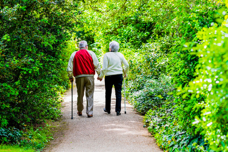 Photo for A picture of an old couple strollingin the park - Royalty Free Image