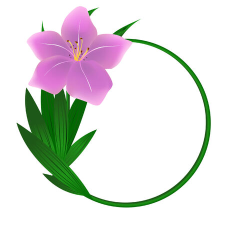 Photo for Beautiful round lily flower background - Royalty Free Image
