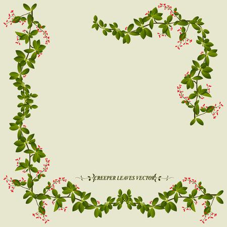Ilustración de Border of creeper flower vine plant vector illustration - Imagen libre de derechos