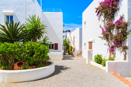 Photo pour Traditional white houses decorated with flowers in Portinatx village, Ibiza island, Spain - image libre de droit